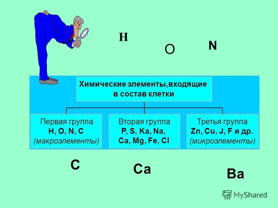 Первая группа H, O, N, C (макроэлементы) Вторая группа P, S, Ka, Na, Ca, Mg, Fe, Cl Третья группа Zn, Cu, J, F и др. (микроэлементы) Химические элементы,входящие в состав клетки H N O C Са Ва