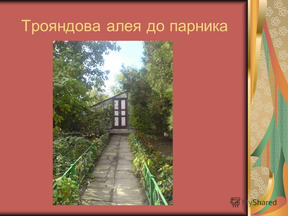 Трояндова алея до парника