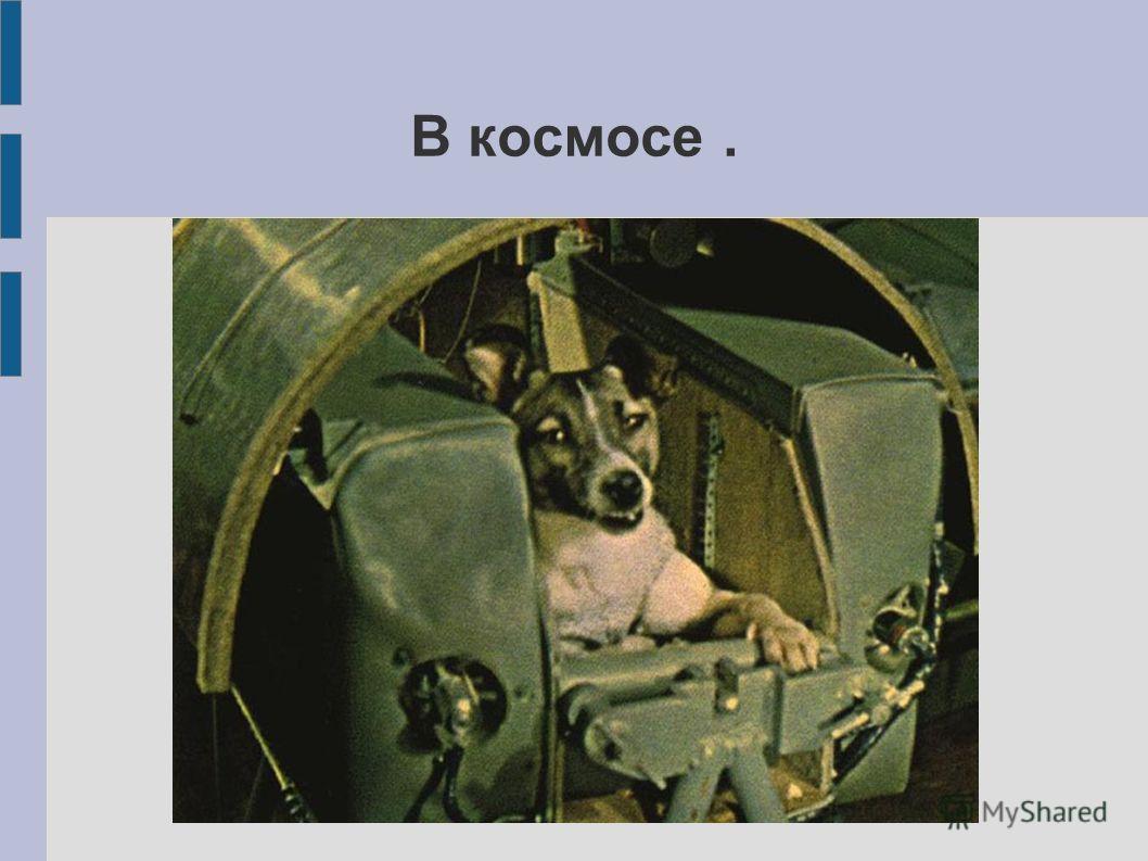 В космосе.