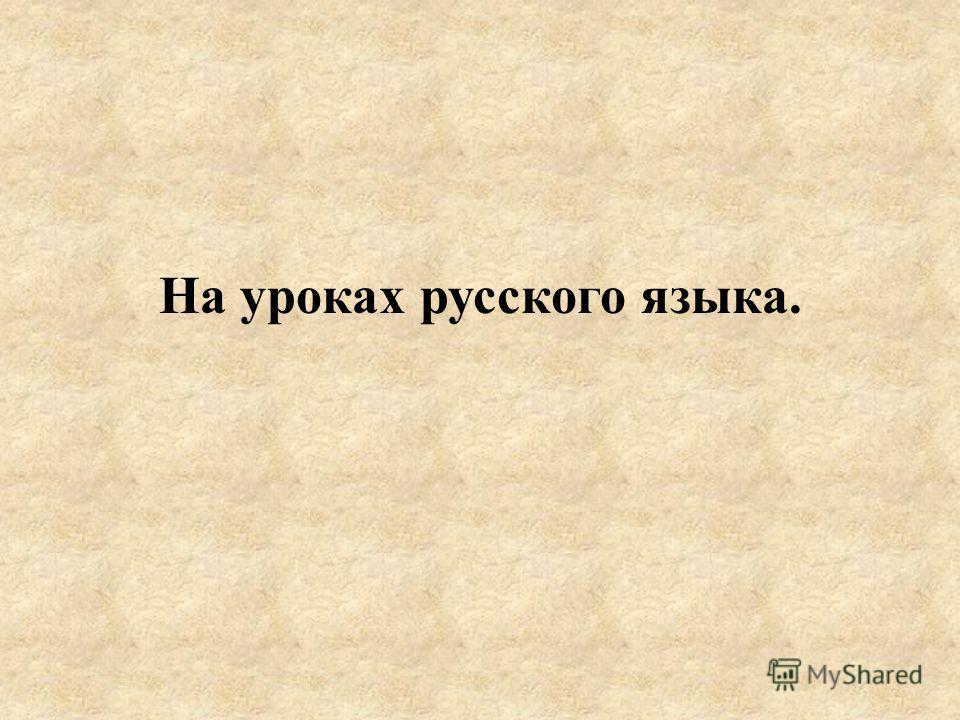 На уроках русского языка.