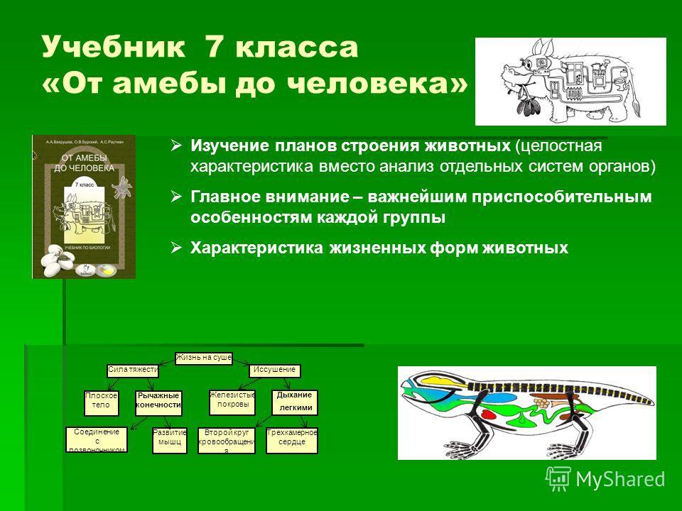 Биология онлайн читать бесплатно 7 класс от амебы до человека