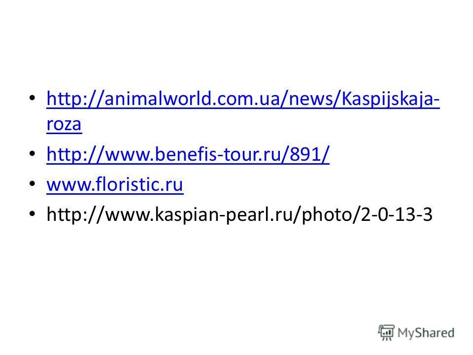 http://animalworld.com.ua/news/Kaspijskaja- roza http://animalworld.com.ua/news/Kaspijskaja- roza http://www.benefis-tour.ru/891/ www.floristic.ru http://www.kaspian-pearl.ru/photo/2-0-13-3