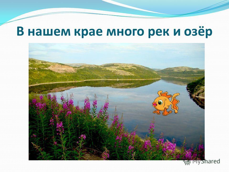 В нашем крае много рек и озёр