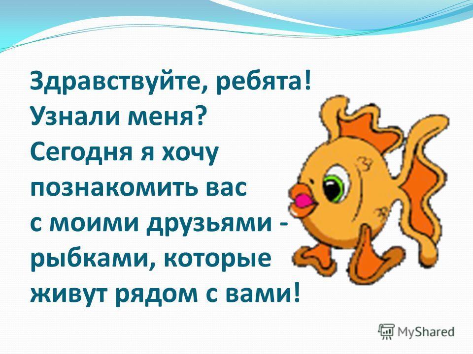 Здравствуйте, ребята! Узнали меня? Сегодня я хочу познакомить вас с моими друзьями - рыбками, которые живут рядом с вами!