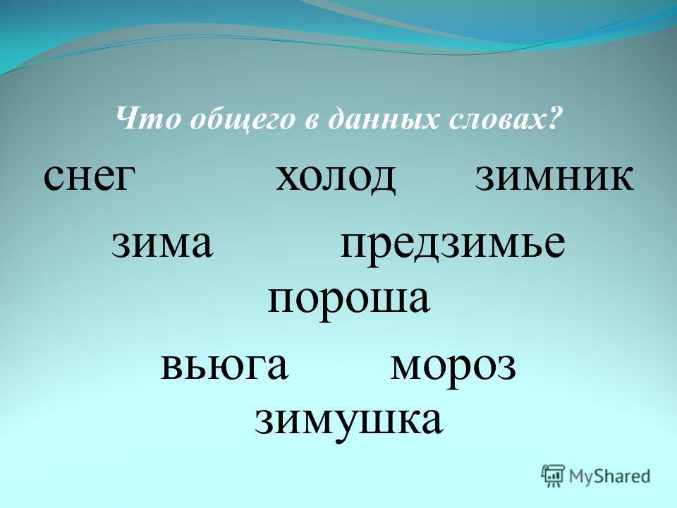 Что общего в данных словах? снег холод зимник зима предзимье пороша вьюга мороз зимушка