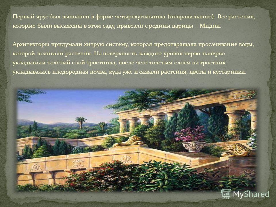 Первый ярус был выполнен в форме четырехугольника (неправильного). Все растения, которые были высажены в этом саду, привезли с родины царицы – Мидии. Архитекторы придумали хитрую систему, которая предотвращала просачивание воды, которой поливали раст