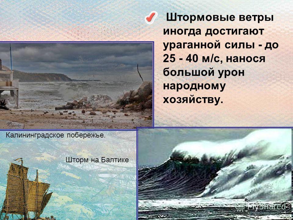 Штормовые ветры иногда достигают ураганной силы - до 25 - 40 м/с, нанося большой урон народному хозяйству. Шторм на Балтике Калининградское побережье.