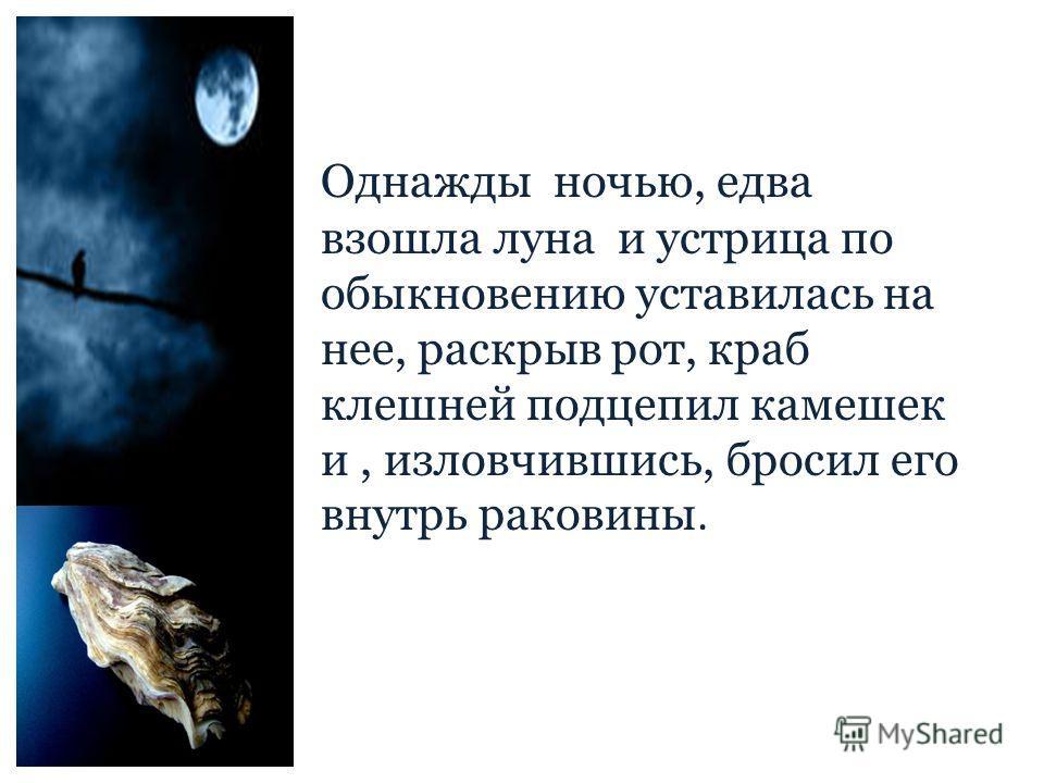 Однажды ночью, едва взошла луна и устрица по обыкновению уставилась на нее, раскрыв рот, краб клешней подцепил камешек и, изловчившись, бросил его внутрь раковины.
