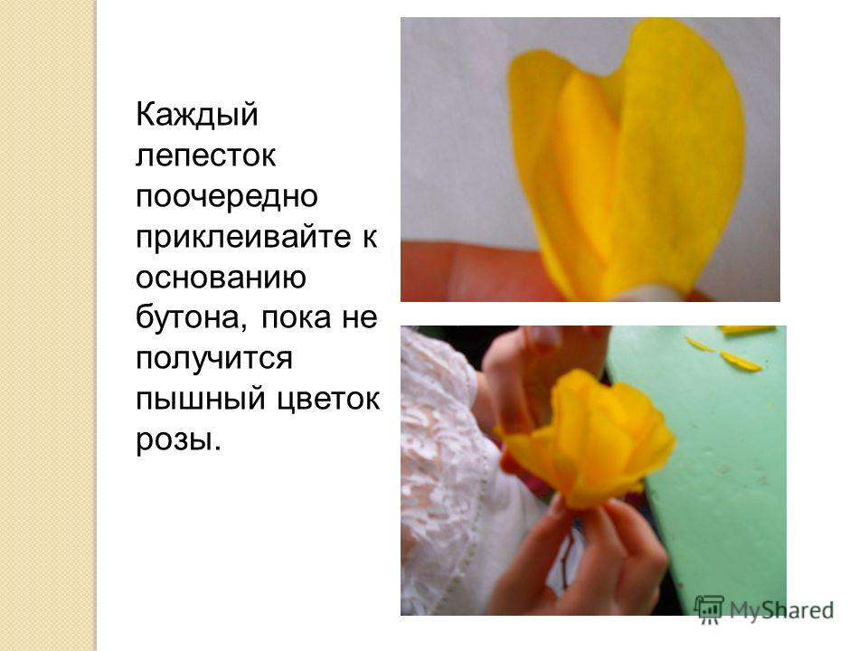 Каждый лепесток поочередно приклеивайте к основанию бутона, пока не получится пышный цветок розы.