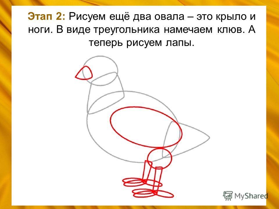Этап 2: Рисуем ещё два овала – это крыло и ноги. В виде треугольника намечаем клюв. А теперь рисуем лапы.