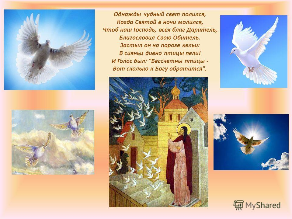Однажды чудный свет полился, Когда Святой в ночи молился, Чтоб наш Господь, всех благ Даритель, Благословил Свою Обитель. Застыл он на пороге кельи: В сияньи дивно птицы пели! И Голос был: Бессчетны птицы - Вот сколько к Богу обратится.