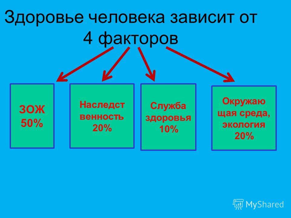 Здоровье человека зависит от 4 факторов Наследст венность 20% Служба здоровья 10% ЗОЖ 50% Окружаю щая среда, экология 20%