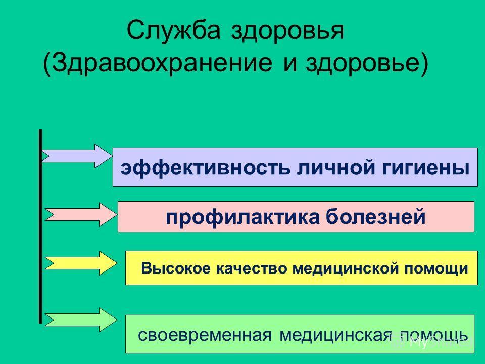 Служба здоровья (Здравоохранение и здоровье) эффективность личной гигиены профилактика болезней Высокое качество медицинской помощи своевременная медицинская помощь