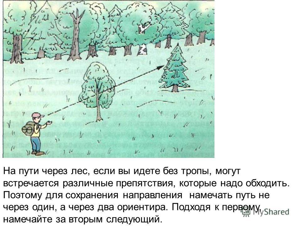 На пути через лес, если вы идете без тропы, могут встречается различные препятствия, которые надо обходить. Поэтому для сохранения направления намечать путь не через один, а через два ориентира. Подходя к первому, намечайте за вторым следующий.