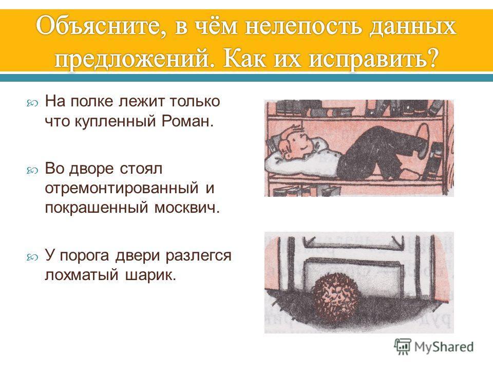 На полке лежит только что купленный Роман. Во дворе стоял отремонтированный и покрашенный москвич. У порога двери разлегся лохматый шарик.