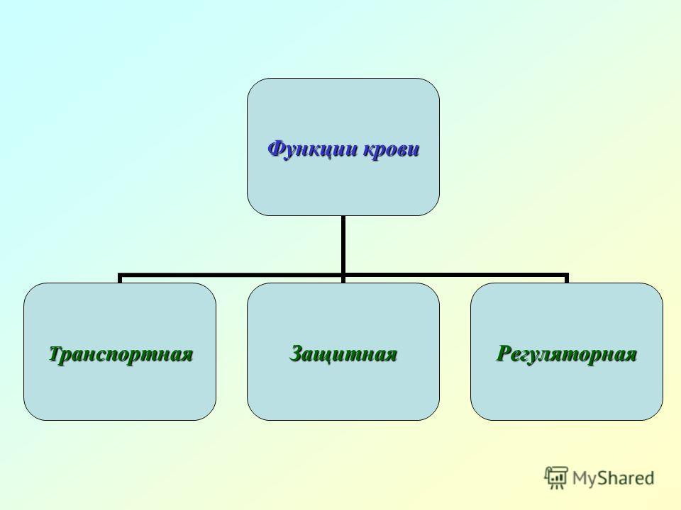 Функции крови ТранспортнаяЗащитнаяРегуляторная