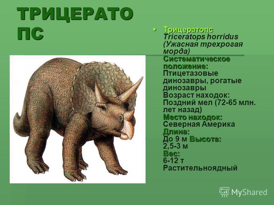 ТРИЦЕРАТО ПС Трицератопс Систематическое положение: Место находок: Длина: Высота: Вес: Трицератопс Triceratops horridus (Ужасная трехрогая морда) Систематическое положение: Птицетазовые динозавры, рогатые динозавры Возраст находок: Поздний мел (72-65