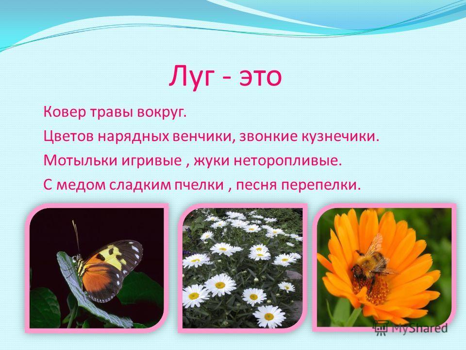 Луг - это Ковер травы вокруг. Цветов нарядных венчики, звонкие кузнечики. Мотыльки игривые, жуки неторопливые. С медом сладким пчелки, песня перепелки.
