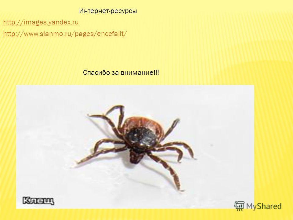 http://images.yandex.ru http://www.slanmo.ru/pages/encefalit/ Интернет-ресурсы Спасибо за внимание!!!