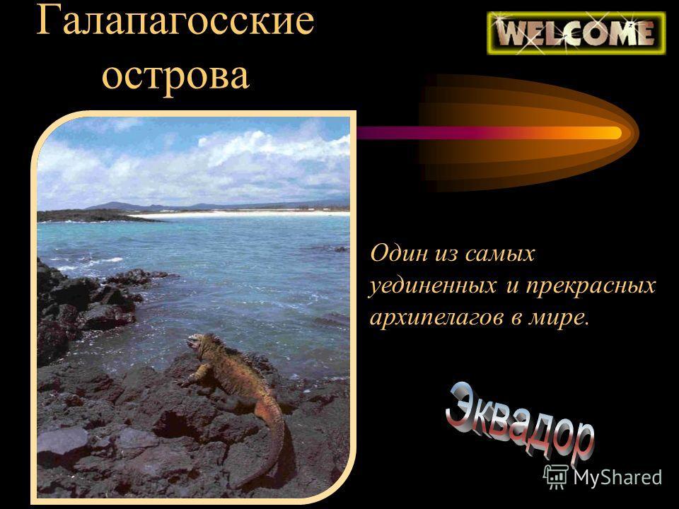 Галапагосские острова Один из самых уединенных и прекрасных архипелагов в мире.