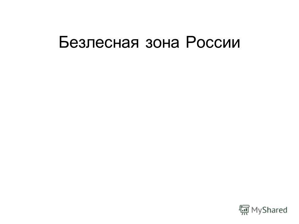 Безлесная зона России