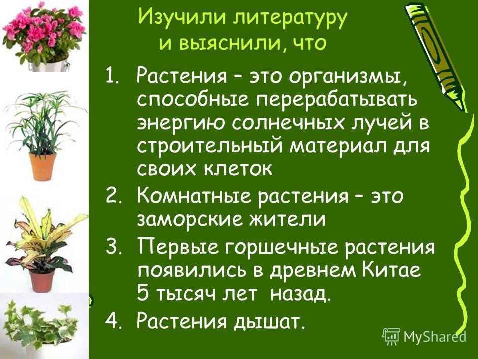Изучили литературу и выяснили, что 1.Растения – это организмы, способные перерабатывать энергию солнечных лучей в строительный материал для своих клеток 2.Комнатные растения – это заморские жители 3.Первые горшечные растения появились в древнем Китае