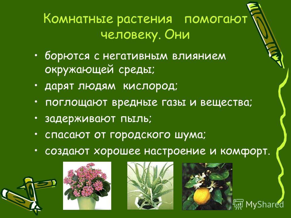 Комнатные растения помогают человеку. Они борются с негативным влиянием окружающей среды; дарят людям кислород; поглощают вредные газы и вещества; задерживают пыль; спасают от городского шума; создают хорошее настроение и комфорт.