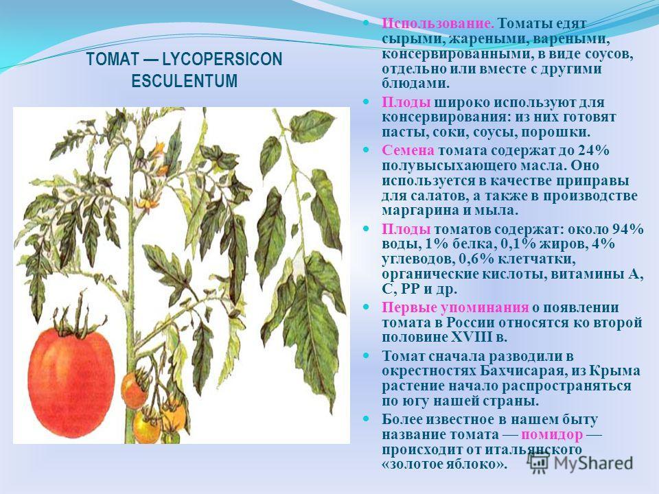 Культурные растения семейства Однолетнее травянистое растение, Происходит из районов Южной Америки. Стебель прямостоячий, ребристый. Листья простые, непарноперисторассеченные. Соцветие завиток. Цветки имеют 5 сросшихся лепестков белой, синей или розо