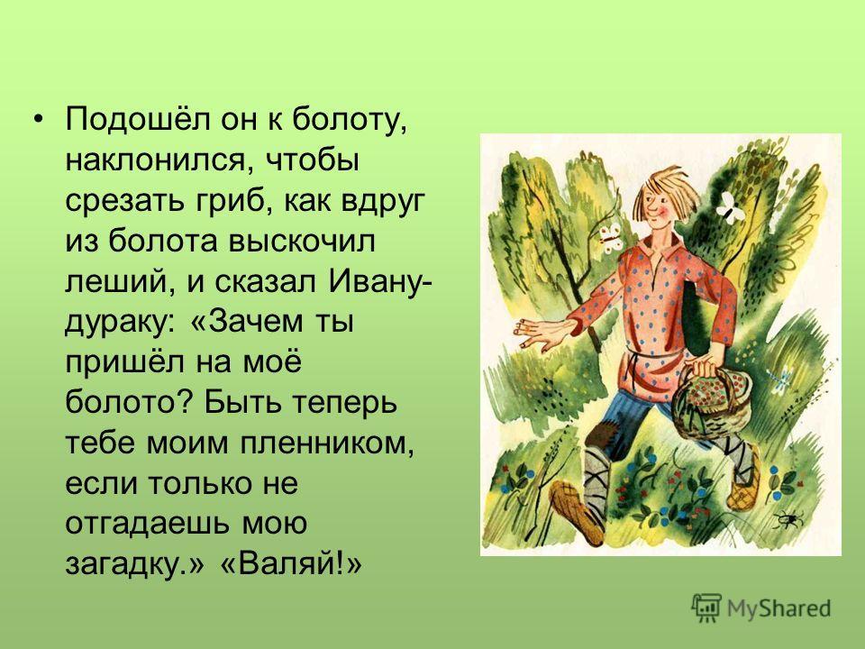 Подошёл он к болоту, наклонился, чтобы срезать гриб, как вдруг из болота выскочил леший, и сказал Ивану- дураку: «Зачем ты пришёл на моё болото? Быть теперь тебе моим пленником, если только не отгадаешь мою загадку.» «Валяй!»