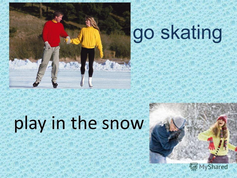 go skating play in the snow