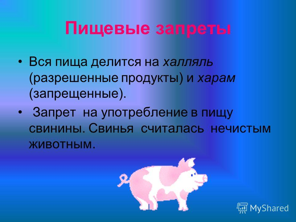 Пищевые запреты Вся пища делится на халляль (разрешенные продукты) и харам (запрещенные). Запрет на употребление в пищу свинины. Свинья считалась нечистым животным.