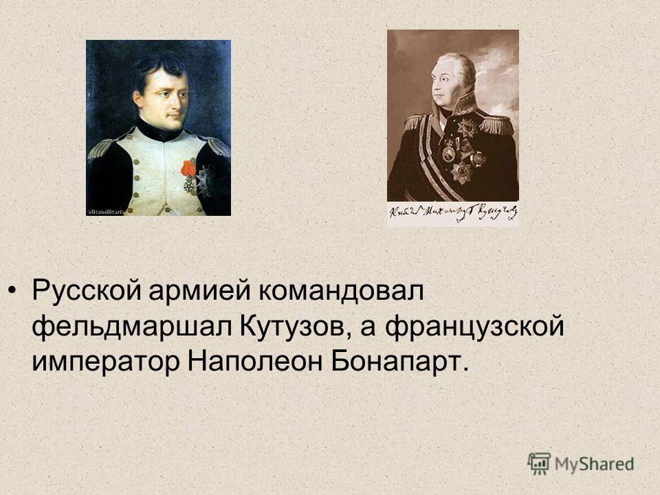 Русской армией командовал фельдмаршал Кутузов, а французской император Наполеон Бонапарт.