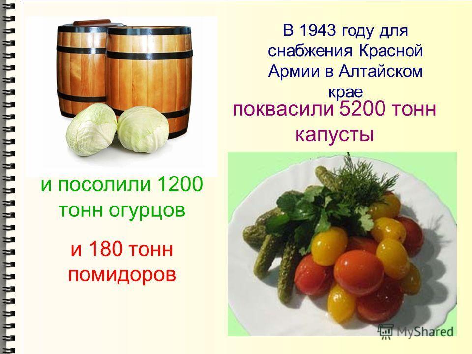 В 1943 году для снабжения Красной Армии в Алтайском крае поквасили 5200 тонн капусты и посолили 1200 тонн огурцов и 180 тонн помидоров