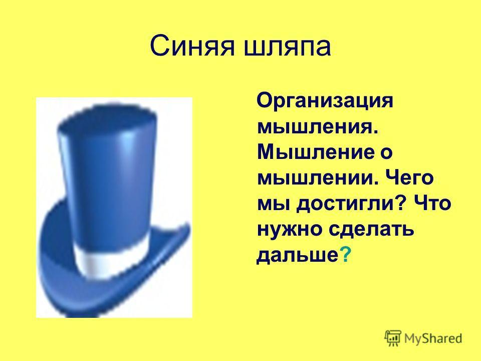 Синяя шляпа Организация мышления. Мышление о мышлении. Чего мы достигли? Что нужно сделать дальше?