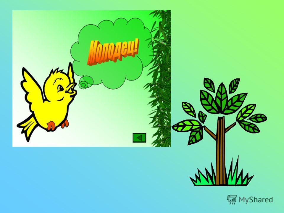 УГАДАЙ ПРЕДМЕТ ПО ОПИСАНИЮ: Это растение. У НЕГО есть корень, ствол, ветви, листья. ОНО еще может давать кислород.