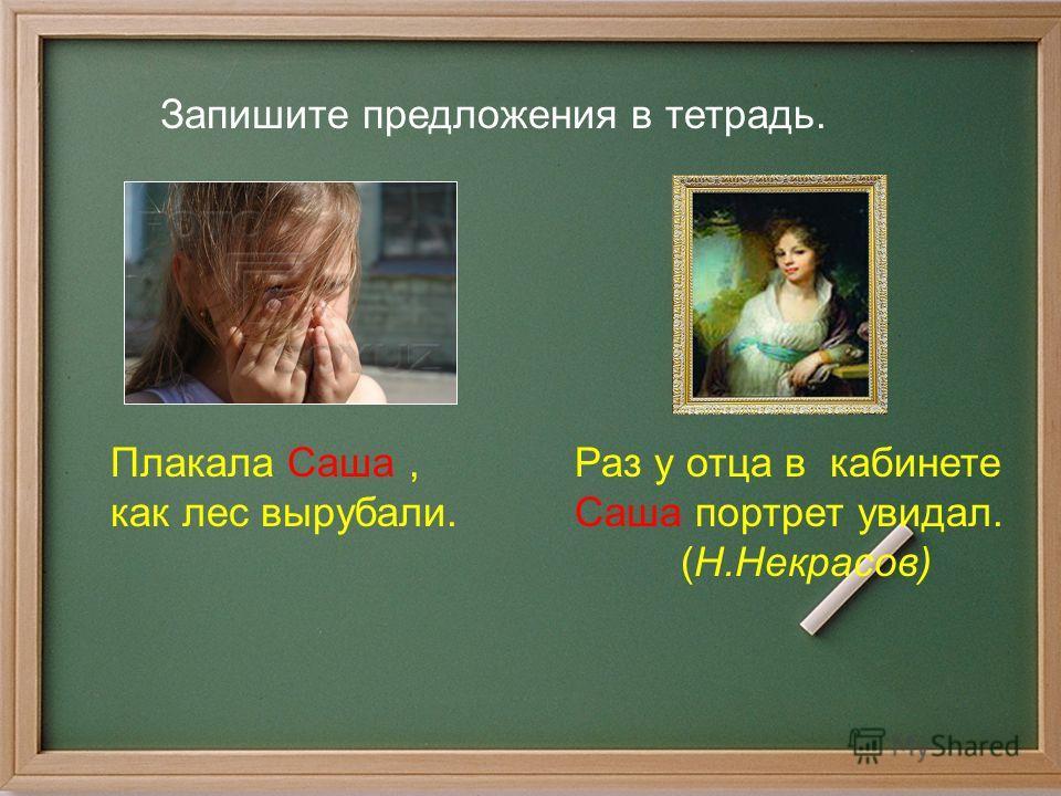 Раз у отца в кабинете Саша портрет увидал. (Н.Некрасов) Запишите предложения в тетрадь. Плакала Саша, как лес вырубали.