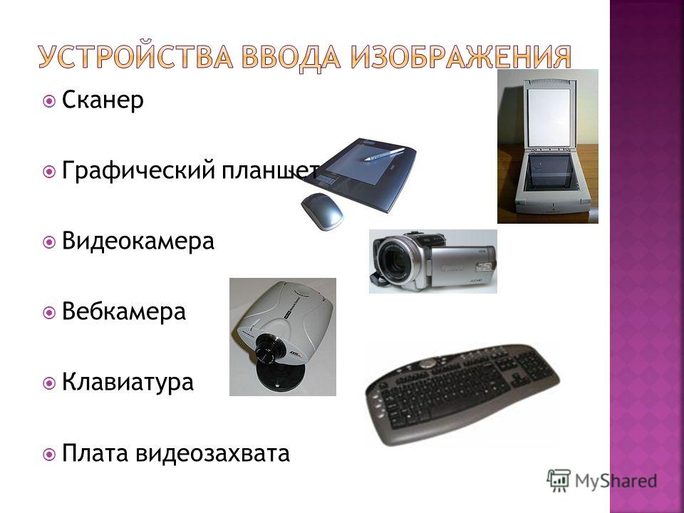 Сканер Графический планшет Видеокамера Вебкамера Клавиатура Плата видеозахвата