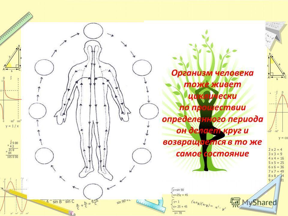 Организм человека тоже живет циклически по прошествии определенного периода он делает круг и возвращается в то же самое состояние