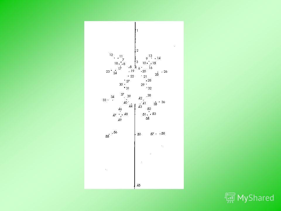 Домашнее задание «Паутина» Выберите по два правильных ответа к каждому вопросу.