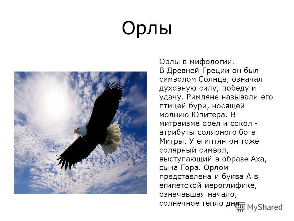 Орлы Орлы в мифологии. В Древней Греции он был символом Солнца, означал духовную силу, победу и удачу. Римляне называли его птицей бури, носящей молнию Юпитера. В митраизме орёл и сокол - атрибуты солярного бога Митры. У египтян он тоже солярный симв