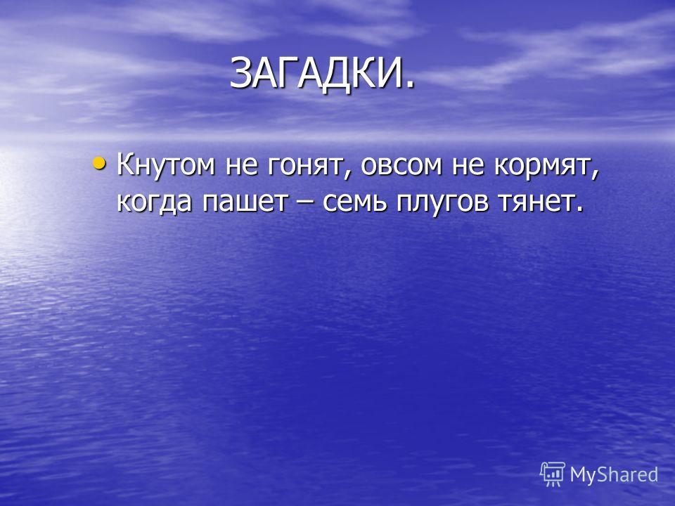 ЗАГАДКИ. ЗАГАДКИ. Кнутом не гонят, овсом не кормят, когда пашет – семь плугов тянет.