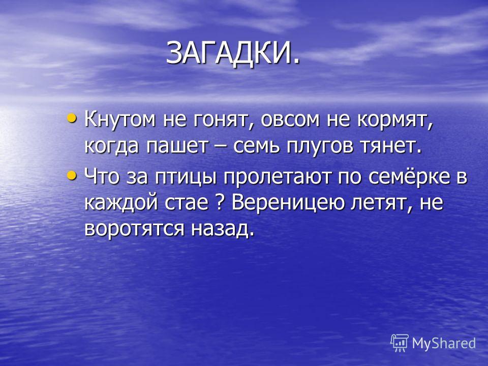 Кнутом не гонят, овсом не кормят, когда пашет – семь плугов тянет. Что за птицы пролетают по семёрке в каждой стае ? Вереницею летят, не воротятся назад.