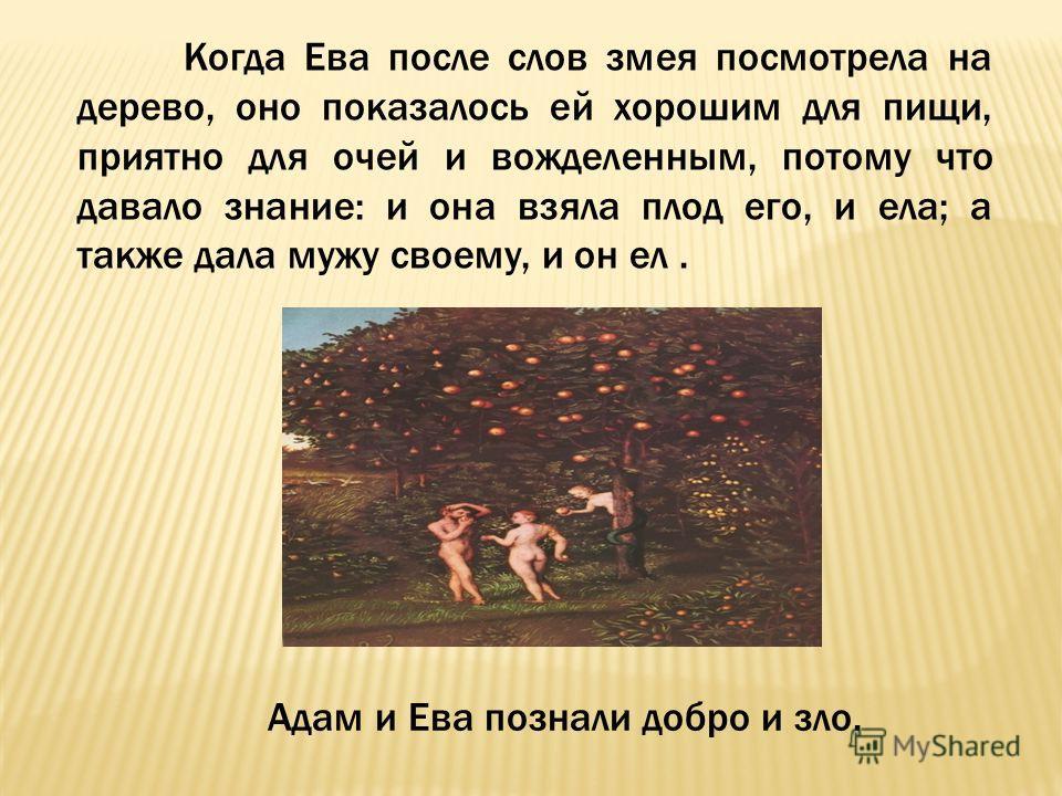 Когда Ева после слов змея посмотрела на дерево, оно показалось ей хорошим для пищи, приятно для очей и вожделенным, потому что давало знание: и она взяла плод его, и ела; а также дала мужу своему, и он ел. Адам и Ева познали добро и зло.