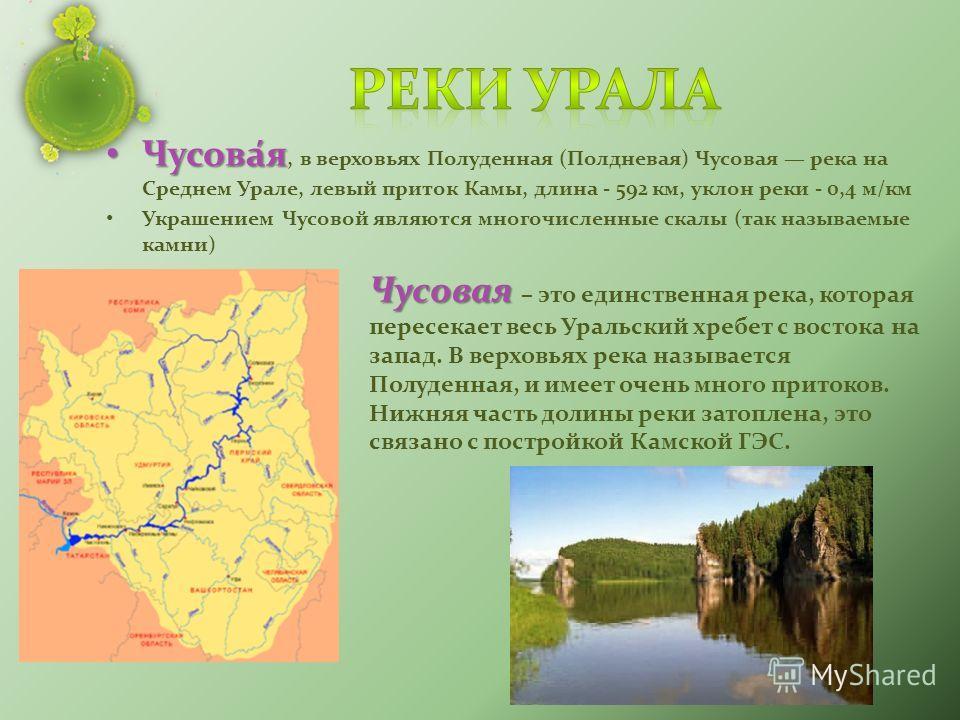 Чусова́я Чусова́я, в верховьях Полуденная (Полдневая) Чусовая река на Среднем Урале, левый приток Камы, длина - 592 км, уклон реки - 0,4 м/км Украшением Чусовой являются многочисленные скалы (так называемые камни) Чусовая Чусовая – это единственная р