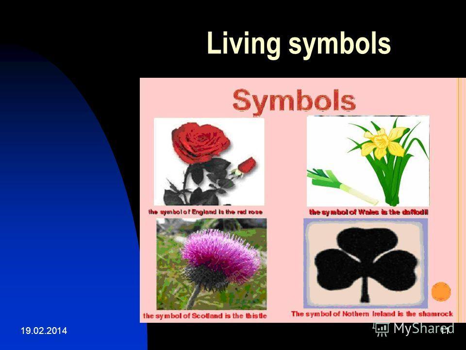 19.02.201411 Living symbols