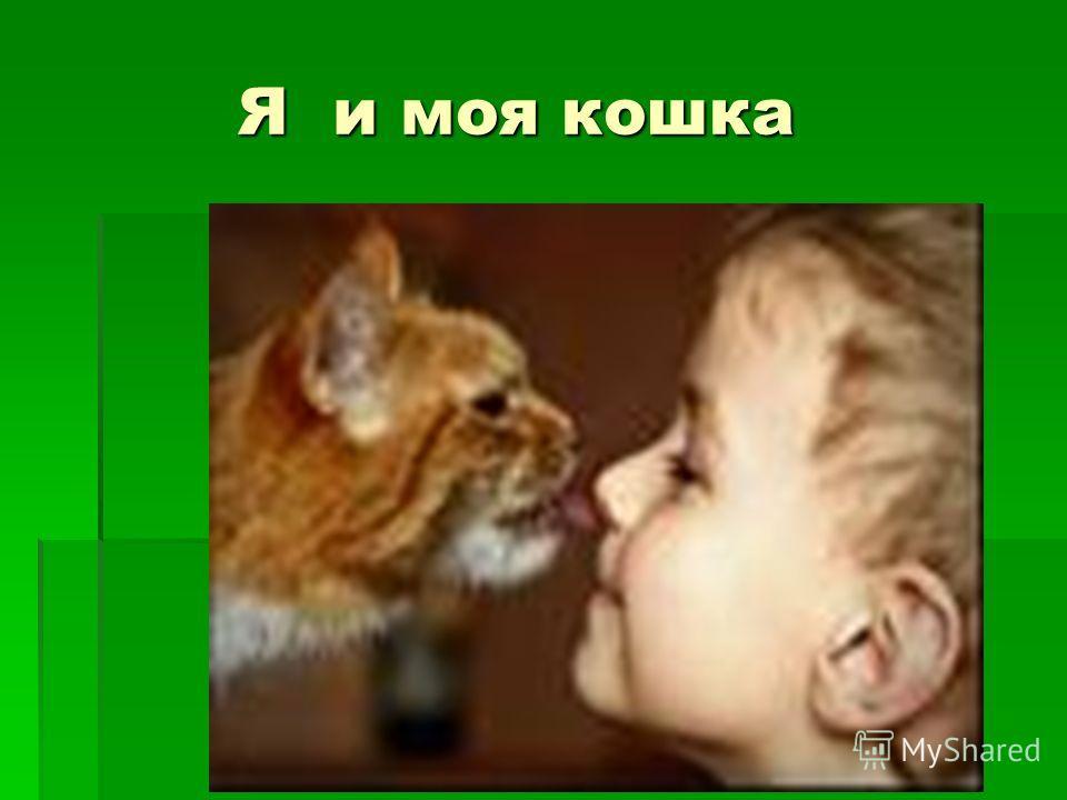 Я и моя кошка Я и моя кошка
