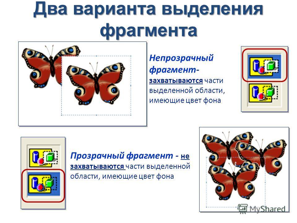Два варианта выделения фрагмента Непрозрачный фрагмент- захватываются части выделенной области, имеющие цвет фона Прозрачный фрагмент - не захватываются части выделенной области, имеющие цвет фона