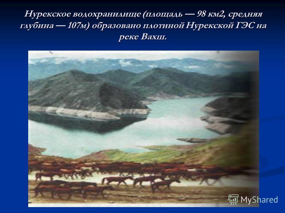 Нурекское водохранилище (площадь 98 км2, средняя глубина 107м) образовано плотиной Нурекской ГЭС на реке Вахш.