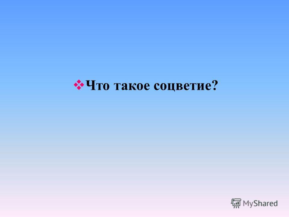 Что такое соцветие?