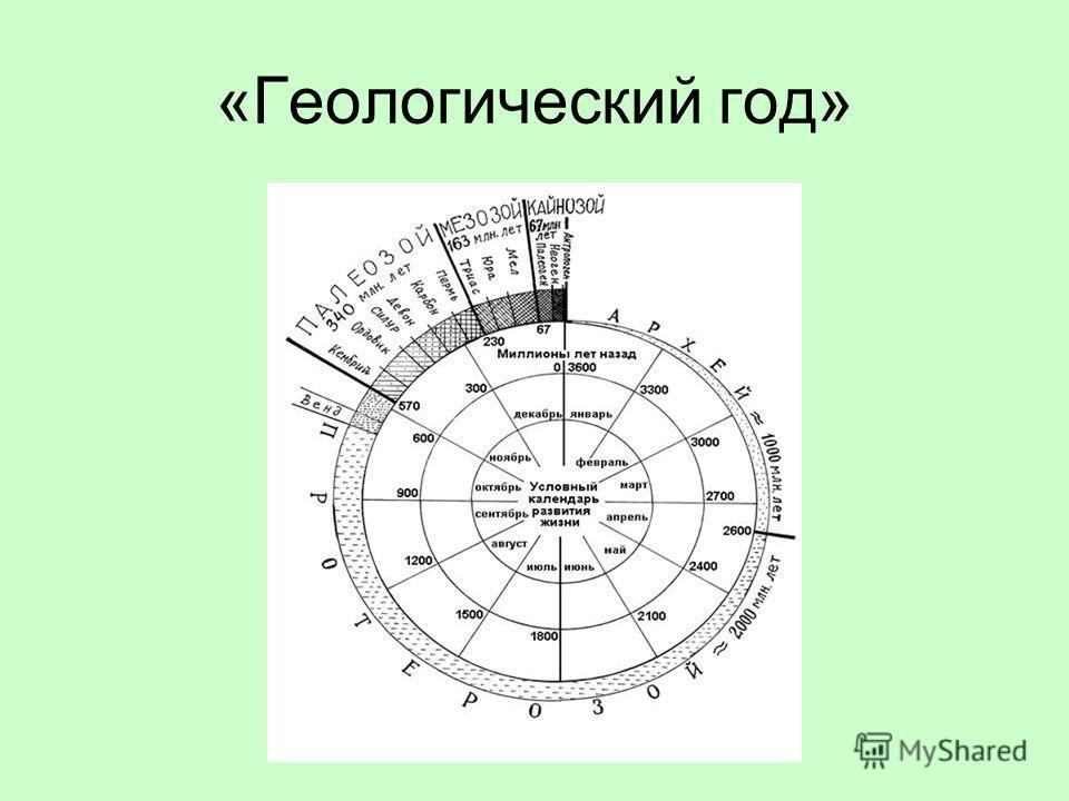 «Геологический год»